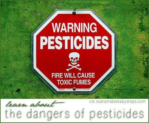 Un maire interdit les pesticides, la préfète l'envoie au tribunal.